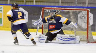 Panters Tigers Face-Off