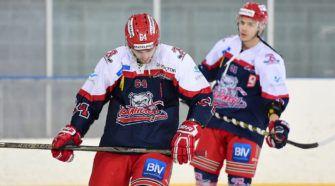 Bulldogs de Liege ijshockey Face-Off