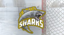 Golden Sharks Mechelen Face-Off IJshockey BeNe League