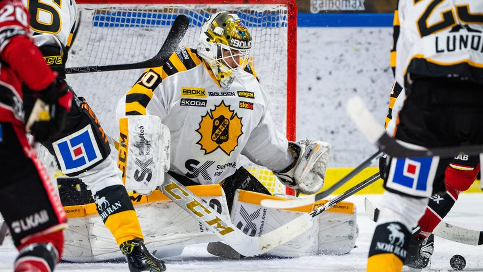 Mantas Armalis - Skellefteå AIK