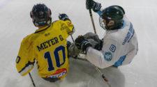 Antwerp Phantoms Dordrecht Polar Bears Para Icehockey