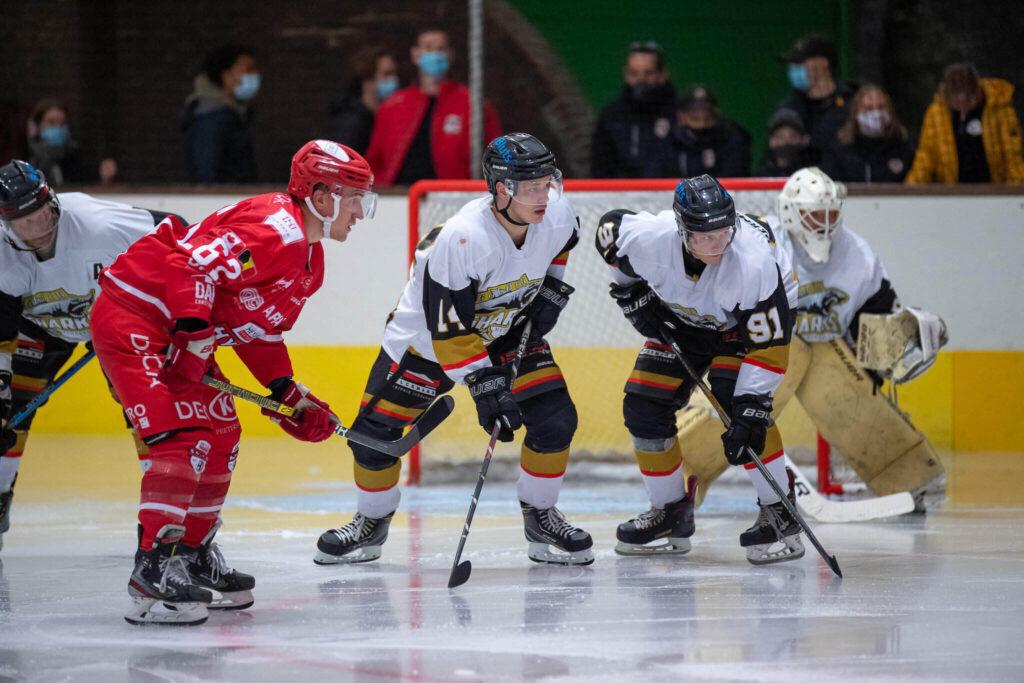 Vastgoed Heylen HYC vs Mechelen Golden Sharks