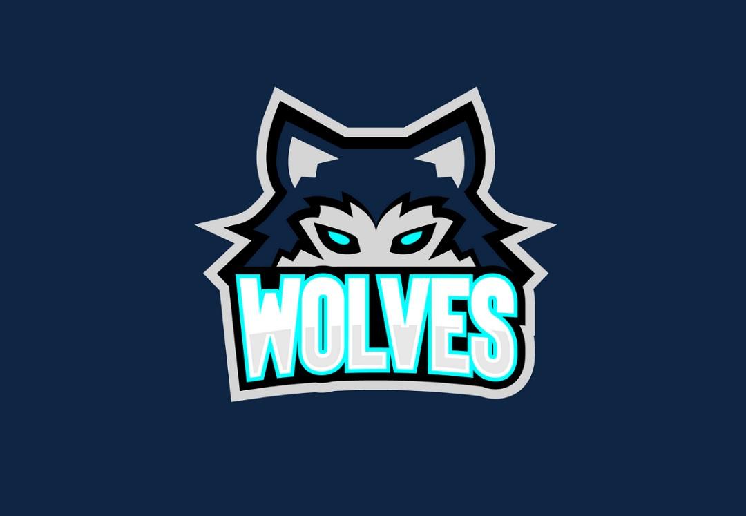 Nijmegen Wolves Logo